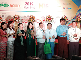 2019缅甸展 (12)