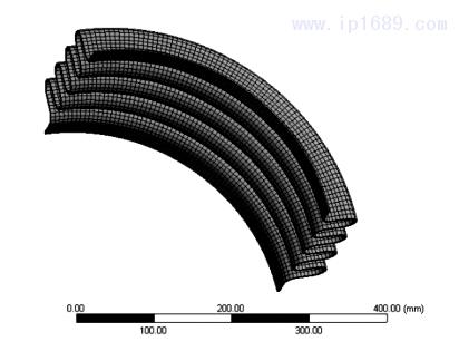 图 1 波纹管有限元模型
