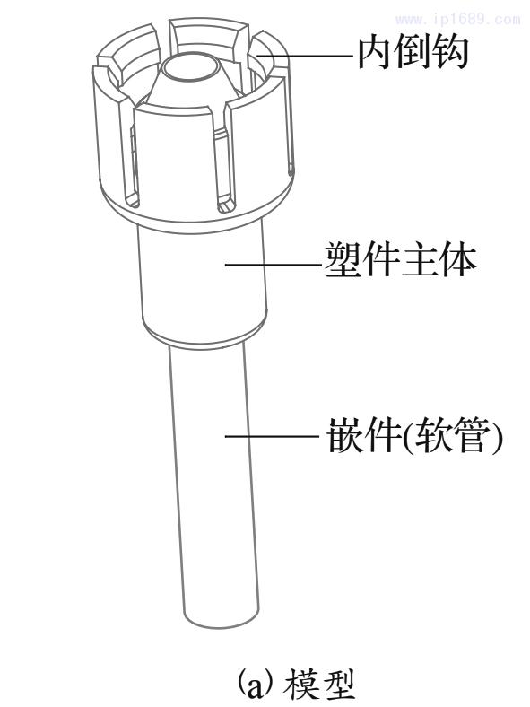 图1 汽车拉线接头模型及内部结构剖切图1